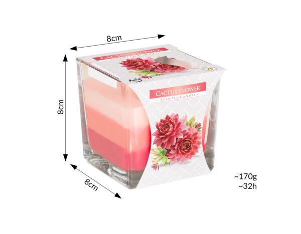 swieca-zapachowa-w-szkle-trojkolorowa-kwiat-kaktusa-bispol-snk80-312-parametry